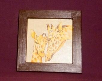 Frame African Giraffe and baby