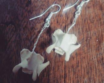 Handmade Vertebrae / Bone Fish Hook Earrings