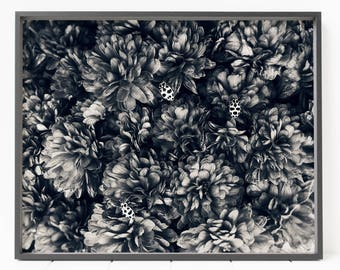 black and white flowers PRINTABLE photo art, floral decor, moody flowers art, large printable art, bugs photo, insect photo, bedroom decor