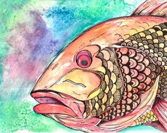 Watercolor Snapper Print