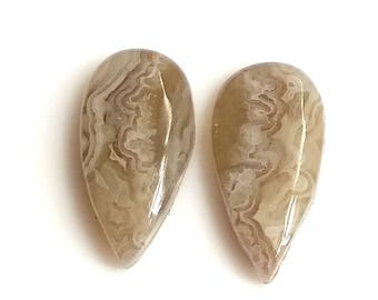 Crazy Lace Agate Pear Pair Cabochon,Size- 19x10 MM, Natural Crazy Lace Agate , AAA,Quality  Loose Gemstone, Smooth Cabochons.