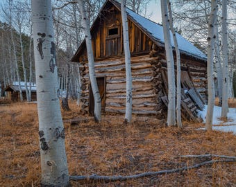 Art Print of A Historic Cabin At Hart Prairie - Unframed