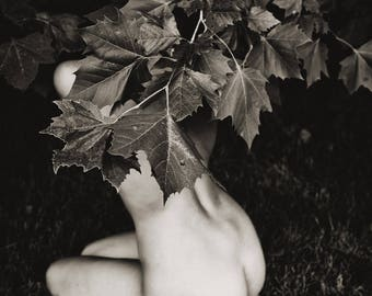 Sanctuary of a Sycamore (Mature) - Fine art black and white photography print, kneeling female nude, under tree leaves