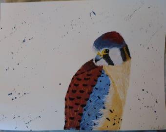 Kestrel painting