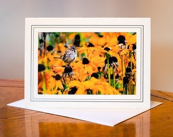 Looking through the Flowers Photograph Card / Blank Inside / Nature Photo Note Card / Greeting Card Art