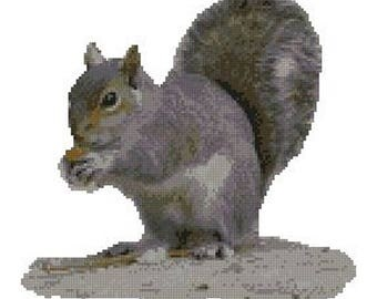 "Grey Squirrel Counted Cross Stitch Kit 10.5"" x 9.75"" 26.7cm x 24.9cm"