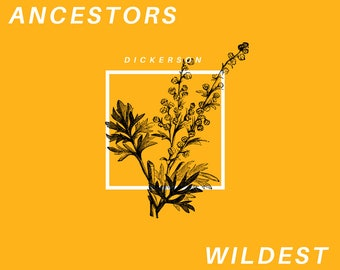 We Are Our Ancestors' Wildest Dreams