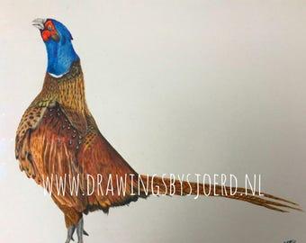 Pheasant Original