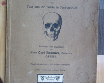 "book  "" Anatomie Fur Kustler ""  - Anatomy for Artists . Skull - Bones - Muscles   German book , y 1914"