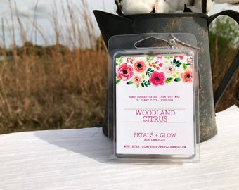 Woodland Citrus Scented Soy Wax Melts, 6 Block Clam Shell Package, 100% Soy Wax, Gifts For Her