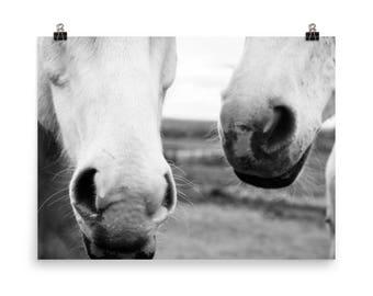 Equestrian Print - Horse Nose - Horse Art - Horseback Riding - Dressage - Gift for Horse Lover