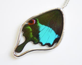 Papilio Paris Real Butterfly Wing Necklace Swallowtail Butterfly Pendant Real Butterfly Jewelry Blue and Black Butterfly Wing Gift under 50