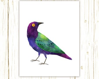 Purple Glossy Starling Print -- bird art -- colorful bird art by stephanie fizer coleman illustration