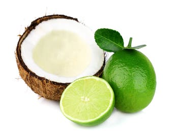 COCONUT LIME Fragrance Oil Candle Scent - 4oz