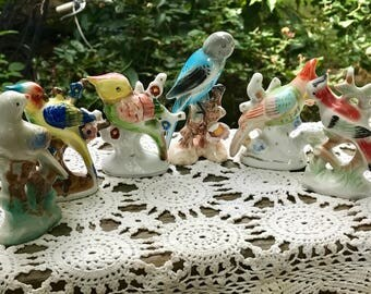 Set of 6 Vintage Colorful Bird Figurines for an Instant Collection