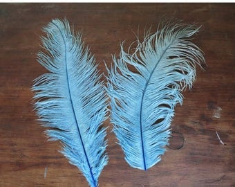 20% Sale - Large Vintage Millinery Feathers  9 & 11 inches Light Blue Vintage Hat Plumes, Antique 1900s
