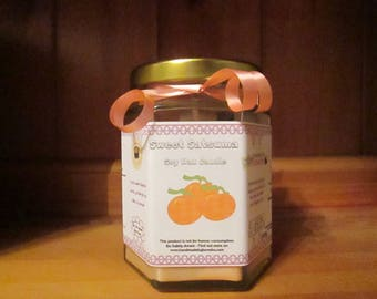 Sweet Satsuma Scented Soy Wax Candle 300g