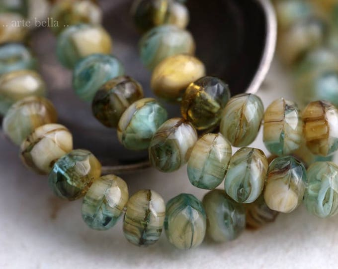 RIVERBED .. NEW 30 Premium Czech Rondelle Glass Beads 3x5mm (5947-st)