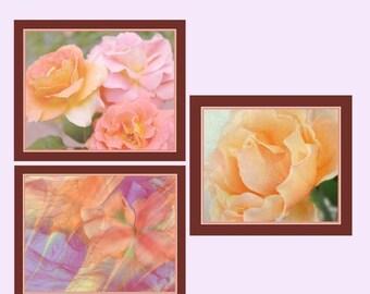 CIJ SALE Floral Photo Group, Floral Photos, Floral Wall Art, Peach Roses Photos, Abstract Iris Photo, Garden Photo Art, Nature Photography