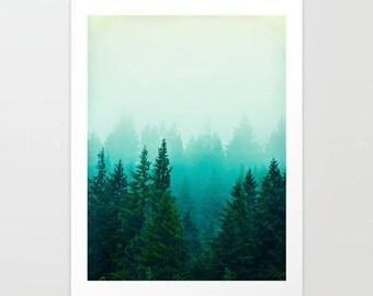 Art Print Foggy Forest Woods Northwest photo, outdoors, blue trees landscape, large photography, Washington, Oregon, rainforest artwork
