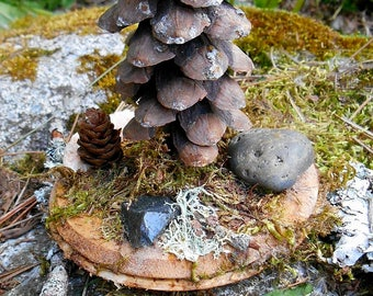 Fairy Garden Tree, Pine Cone Tree with Moss, stones and Lichen, miniature fairy house accessories, miniature tree