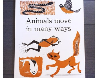 Original Vintage School Science Animal Poster The Instructor Primary Science Concept Charts Cynthia Amrine 1960s