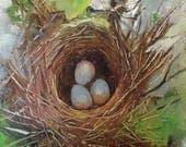 Bird Nest Bird Eggs Painting,Home Decor Wall Art,Nature Still Life,Original Canvas Oil Painting by Cheri Wollenberg