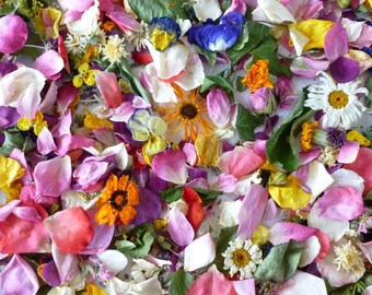 Bulk Dried Flowers, Aisle Decoration, Wedding Confetti, Biodegradable, Table Decor, Flower Girl, Dry Rose Petals, 150 cups Confetti
