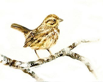 Song Bird Original Painting 5 x 7 Watercolor