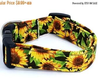 ON SALE Through The Sunflower Fields Fall Yellow Sunflowers on Black Dog Collar