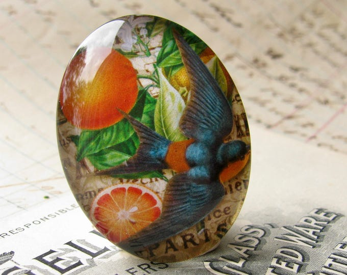 Orange and blue bird cabochon, 40x30mm glass oval cabochon, vintage fruit drawing, colorful produce label, handmade in this shop, 30x40mm