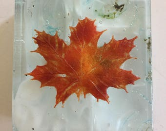 Fused glass, handmade maple leaves, leaves,Fused Glass art, limited edition art, glass paper weight, handmade glass paper weight, Canada