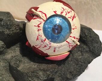 School Teaching  Model Eye