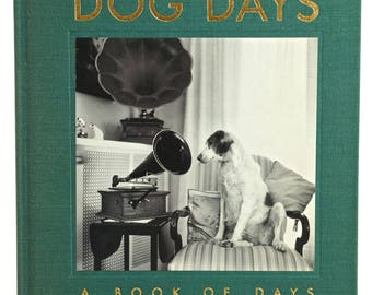 DOG DAYS - A Book of Days by Ruth Silverman, Illustrated, Hardback 1st Ed. 1981