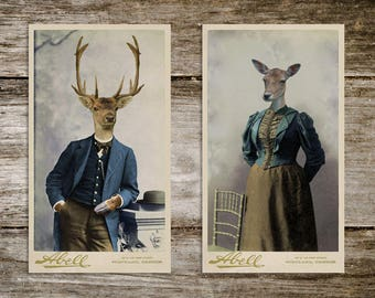 Harold & Maud Antique Deer Cabinet Card Print Set from Curious London