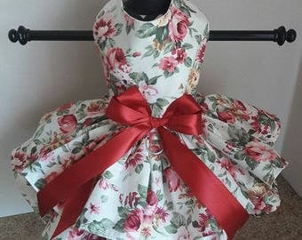 Dog Dress  Burgandy Roses