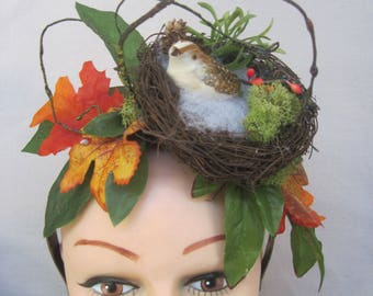 Petite White Spotted Bird in a Nest  n Fall Greenery