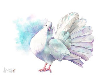 Dove print of watercolour painting 5 by 7 size D22217, Dove watercolor painting print, Dove bird art print, Peace print, Dove painting