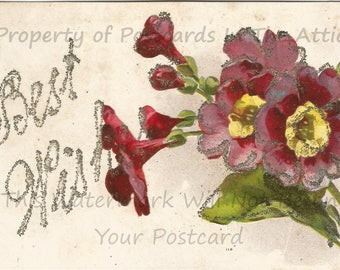 Purple Four O'Clock Flowers Old Fashioned Flowers Silver Glitter Vintage Postcard