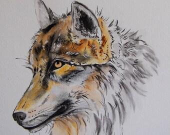 loup, animaux, art animalier, art,  dessin encre fusain et crayon  original signé