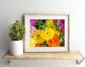 Ranunculus Photo, Botanical Art, Nature Photography, Flower Photography, Floral Wall Decor, Fine Art Photography, Large Photography