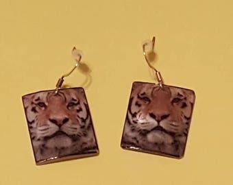 Tiger Shell Earrings