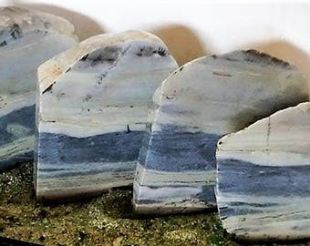 "Picture Sandstone Rock Set ""Ocean Shore"" Sliced Natural Gray/Blue 4 pcs Free US Shipping #ST884"