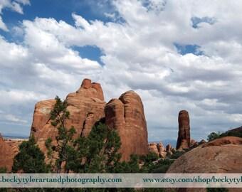 Arches National Park, Devils Garden, Utah,  Fine Art Photo Print