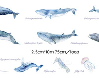 1 Roll of Limited Edition Washi Tape- Whale and Marine Life