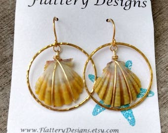 Hawaiian Sunrise Shell Gold Hoop Earrings