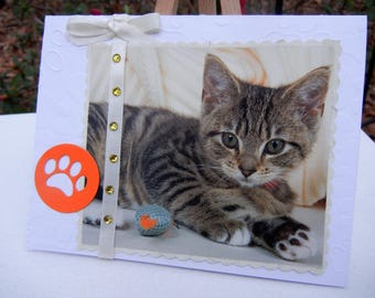 Cat Greeting Card Perfect Thank You to Pet Sitter, Groomer, or Veterinarian and Staff or Send to Someone Who Loves Cats