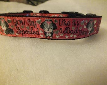 You say spoiled like it's a bad thing pet collar