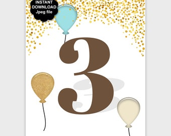3rd Birthday Table Sign Printable, Third Birthday Party Sign, Gold Confetti Birthday Decor, Aqua Brown 8x10 11x14 Instant Download - PP7
