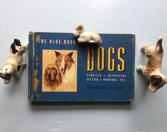 Tiny Vintage Dog Book, Blue Book of Dogs, Spaniels, Retrievers, Setters, Pointers, Sporting Dogs, Working, Non Sporting, Color Illustrations
